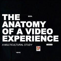 The Anatomy of a Video Experience - A multicultural story